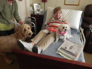 Pet Therapy Brings Joy and More to McKnight Place Residents