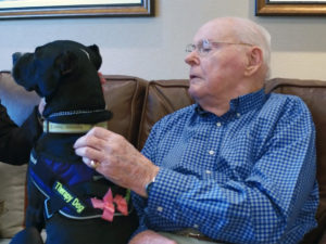 Spotlight: Pet Therapy