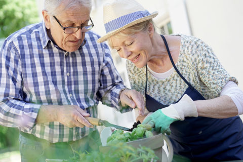 Being active and engaged is important for senior adults to stay healthy mentally and physically. Yet people with Alzheimer's disease or other types of dementia may begin to withdraw and limit their activities due to cognitive impairments.